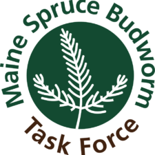 spruce budworm task force logo